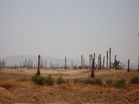 building land in spain