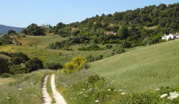 buying rural property in spain