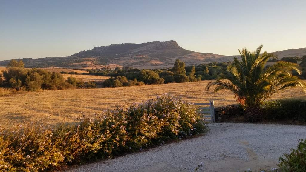 Regularisation of illegal property by the Andalusian regional Government
