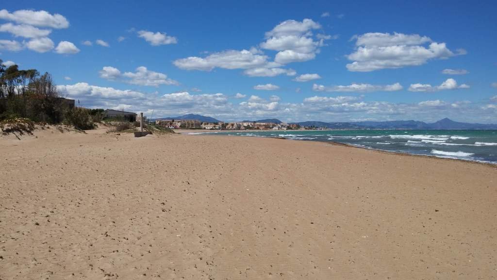 Denia, in the Valencian Region, where cash buyers dominate the property market.