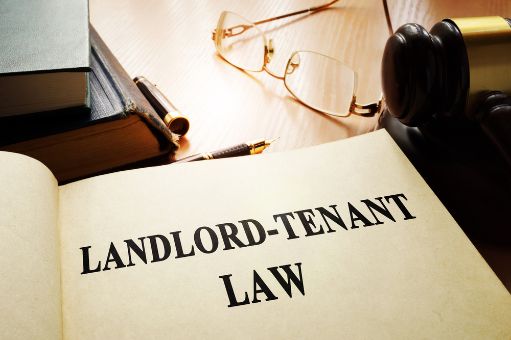 Distinction Between Long Term And Seasonal Rental Contracts In Spain
